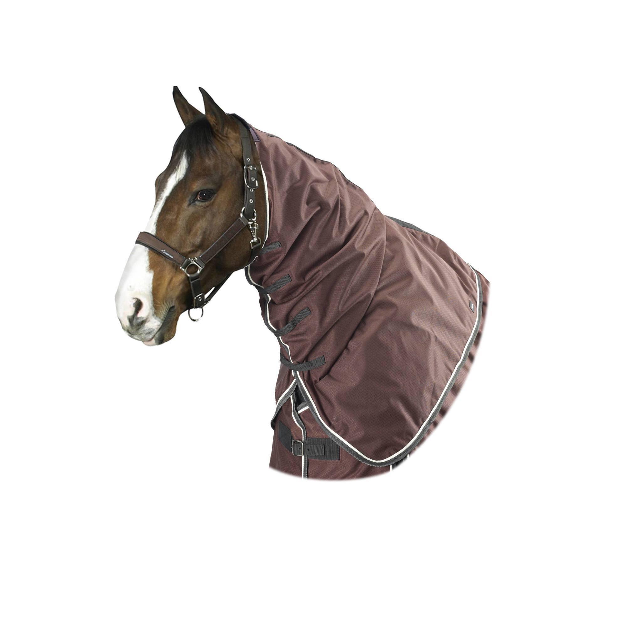 Couvre-cou équitation cheval ALLWEATHER LIGHT marron