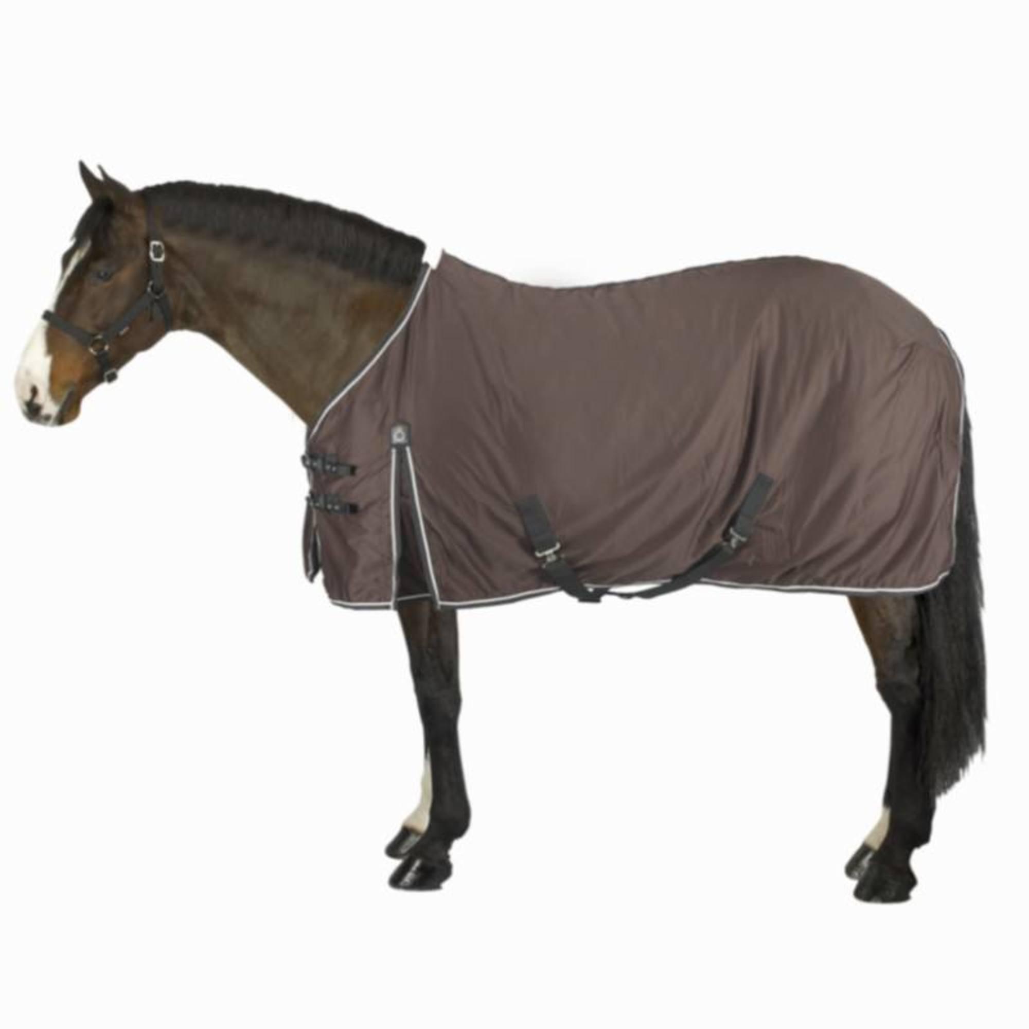 Chemise écurie équitation poney et cheval STABLE LIGHT marron