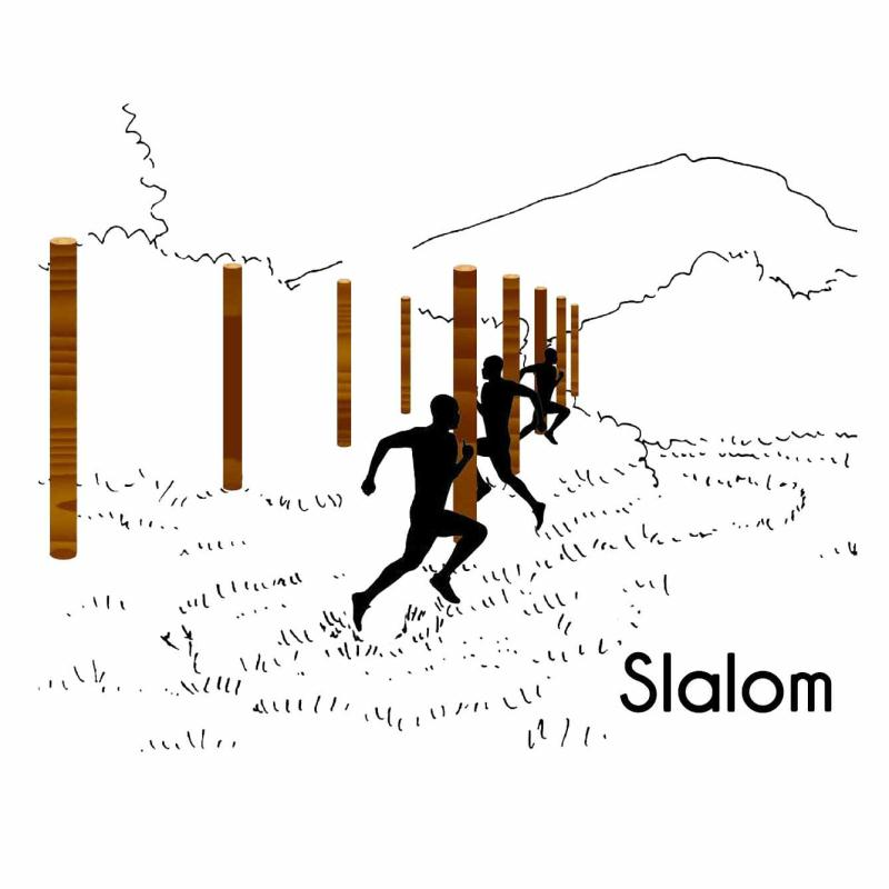 LE SLALOM MODULE PARCOURS SPORTIF
