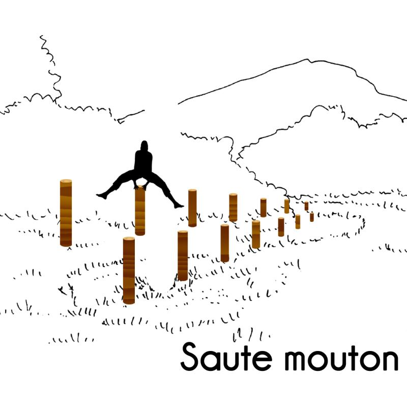 SAUTE MOUTON MODULE PARCOURS SPORTIF