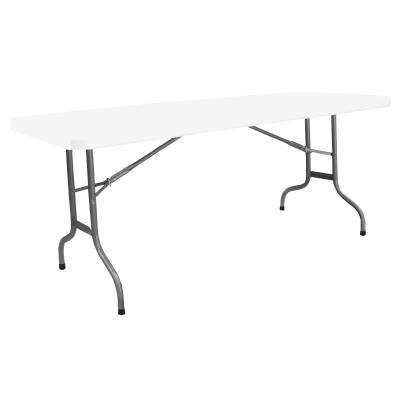 LOT DE 10 TABLES POLYETHYLENES 183X75
