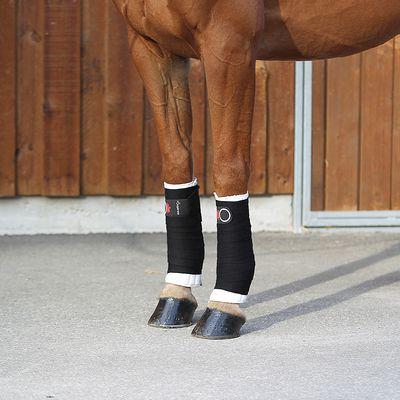 Lot de 2 petites flanelles équitation cheval et poney blanc