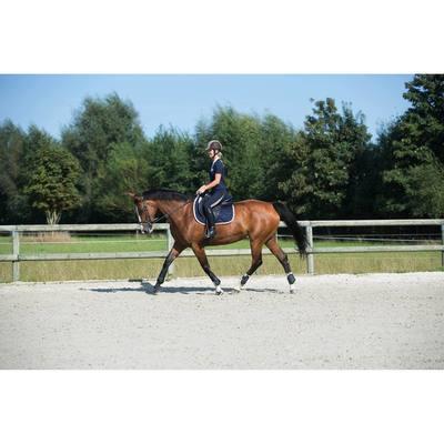 2 protège-boulets équitation poney et cheval RIDING marron