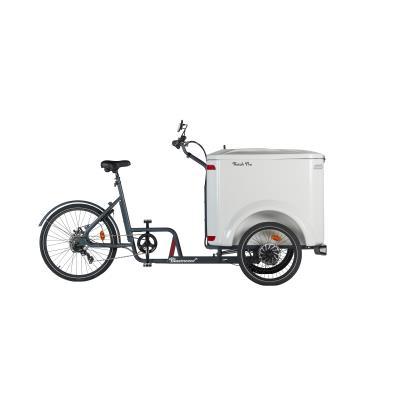 vélo cargo triporteur ketch mécanique pro