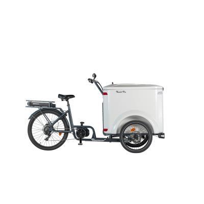 vélo cargo triporteur ketch électrique pro