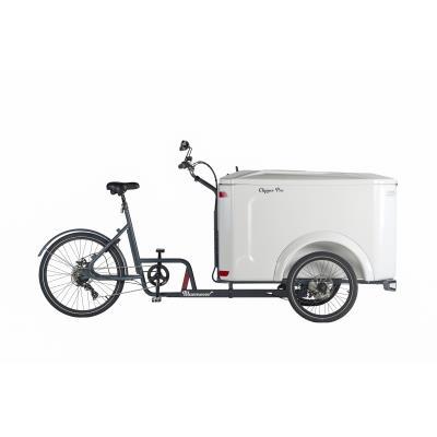 vélo cargo triporteur clipper mécanique pro