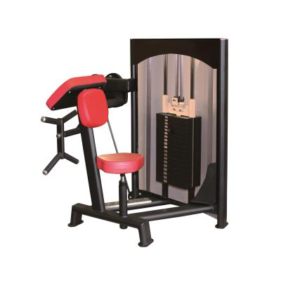 MACHINE À BICEPS ROUGE STANDARD 60 KG