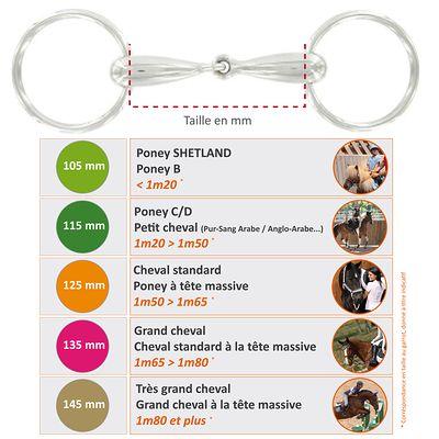 Mors équitation poney et cheval 2 anneaux creux en inox