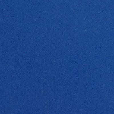 Tongue natation homme blanc bleu