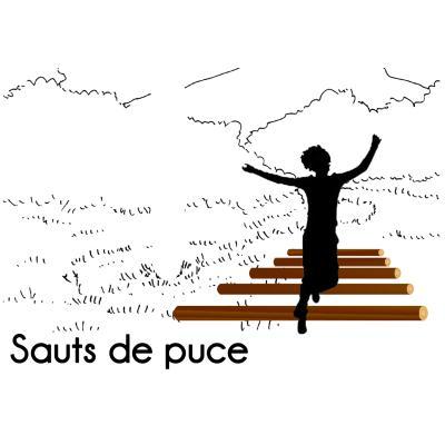 SAUTS DE PUCE MODULE PARCOURS SPORTIF