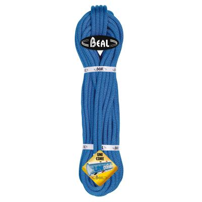 CORDE ESCALADE WALL MASTER VI 10.5 MM BEAL