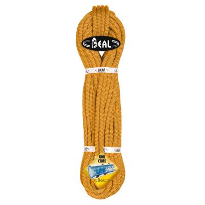 CORDE ESCALADE WALL MASTER VI 10.5 MM BEAL ORANGE