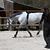 Gogue équitation cheval et poney SCHOOLING noir