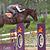 Sangle bavette cuir équitation cheval et poney ROMEO marron
