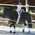 4 bandes de polo équitation poney et cheval blanc - 3 m