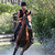 Casque de cross équitation C700 noir