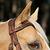 Bridon licol + rênes équitation randonnée ESCAPE marron - taille cheval